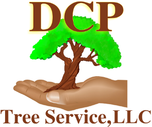 DCP Tree Service, LLC - Home